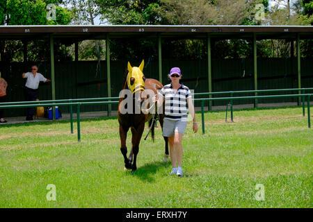 Australia Day races at Kilcoy - Stock Photo