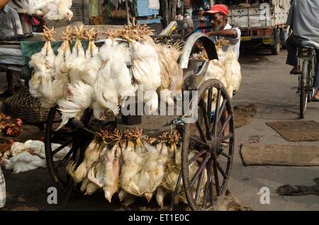 chickens hanging hand rickshaw Kolkata West Bengal India Asia - Stock Photo