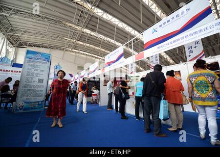 Harbin, China's Heilongjiang Province. 11th June, 2015. People visit the 2015 China-Russia Cultural Exhibition in - Stock Photo