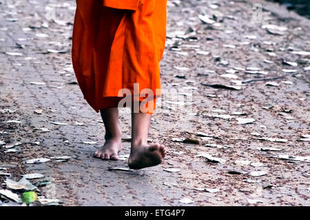 Asia. Thailand, Chiang Mai. Young Buddhist monks on their morning procession for offerings of food near a monastery. - Stock Photo