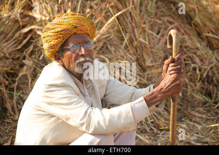 Portarit of Rajasthani man in white clothes and colourful turban, Pushkar, Rajasthan, India - Stock Photo