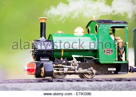 Hereford Society of Model Engineers model steam train railway loco. - Stock Photo