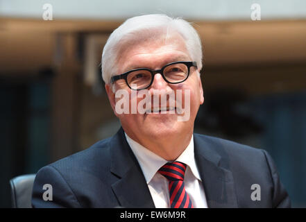 Berlin, Germany. 18th June, 2015. German Foreign Minister Frank-Walter attends a public meeting of the Edathy investigation - Stock Photo