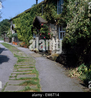 Exterior of a terraced stone cottage with climbing roses on the walls and on porch - Stock Photo