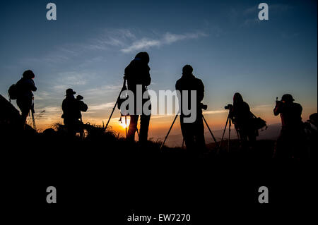 silhouette of photographer taking picture of landscape during sunrise - Stock Photo