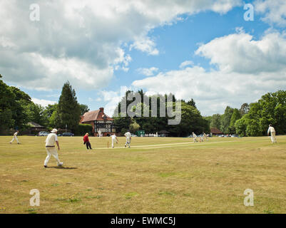 Village cricket Tilford. - Stock Photo