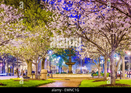 Macon, Georgia, USA downtown with spring cherry blossoms. - Stock Photo
