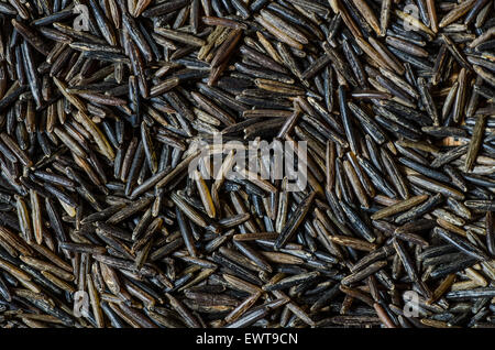 close up to wild rice grains - Stock Photo