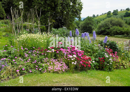 View of a colourful organic rural herbaceous border country garden in bloom set in the countryside in West Wales - Stock Photo