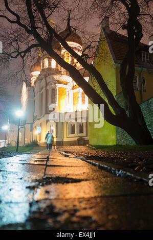Alexander Nevsky Cathedral at night, Tallinn, Estonia - Stock Photo