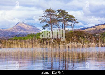 Loch Druim Suardalain and Mount Suilven, Highlands, Scotland, Great Britain, Europe - Stock Photo