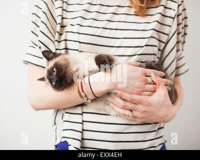 Woman holding Siamese cat - Stock Photo