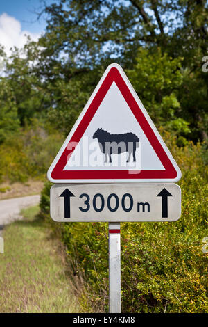 Triangular traffic sign warning of sheep on the road on a rural road background - Stock Photo