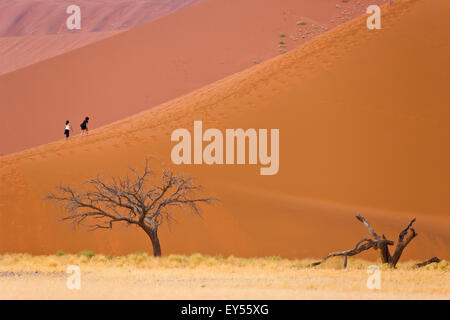 Dune 45 - Namib Desert Namibia - Stock Photo