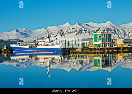 View of harbor fishing boats and snow covered mountains, Hofn, Iceland - Stock Photo
