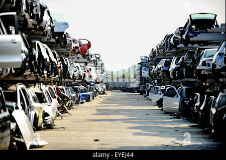 Wrecked vehicles are seen in a car junkyard - Stock Photo