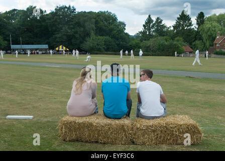Village Cricket Sussex UK HOMER SYKES - Stock Photo