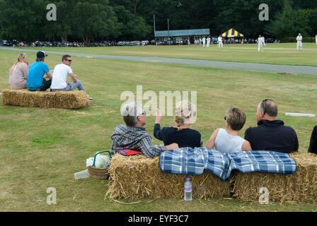 Village Cricket UK HOMER SYKES - Stock Photo