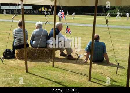 Village cricket match HOMER SYKES - Stock Photo