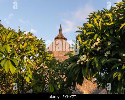 Flic en Flac, Mauritius. La Pirogue tourist resort. Traditional thatch roof and Frangipani trees. - Stock Photo