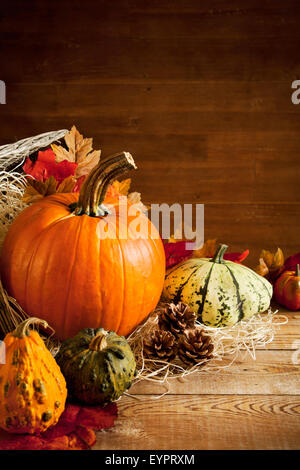 A rustic autumn still life with pumpkins and a Jack O'Lantern on a wooden table. - Stock Photo
