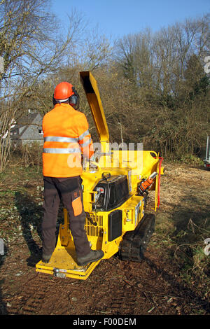 lumberman on chaff-cutting machine, Germany - Stock Photo
