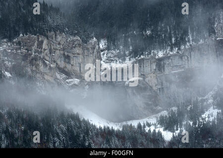 snow covered mountain peaks and rocks with pine forest, France, Vercors National Park - Stock Photo
