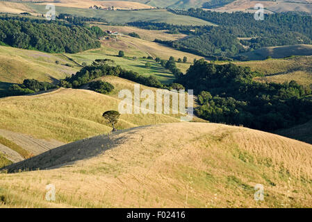 Landscape, Volterra, Province of Pisa, Tuscany, Italy - Stock Photo