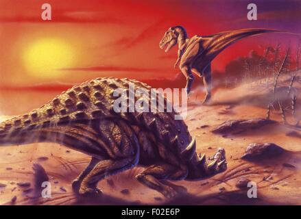 Palaeozoology - Cretaceous period - Dinosaurs - Sauropelta and Albertosaurus - Art work - Stock Photo