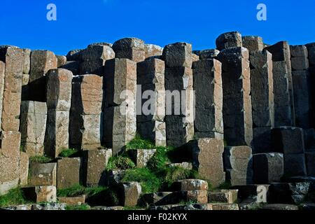 Basaltic prisms, the Giant's Causeway, outcrop of interlocking basalt columns (UNESCO World Heritage List, 1986) - Stock Photo