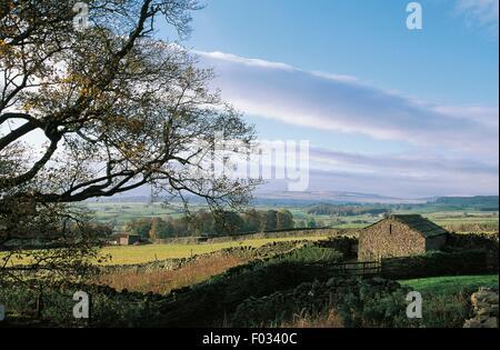 Landscape near Bolton castle, North Yorkshire, England, United Kingdom. - Stock Photo