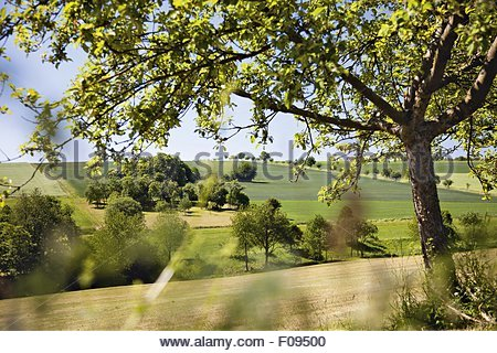 View of landscape at Vielbrunn in Michel city, Odenwald, Hesse, Germany - Stock Photo