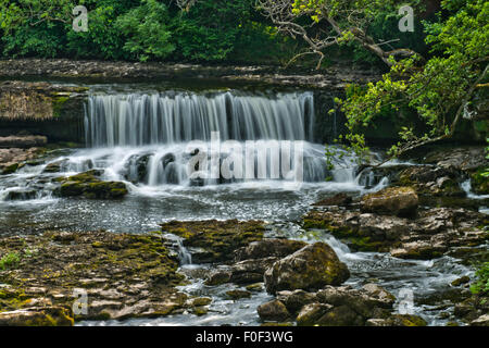 The Middle Falls on the river Ure at Aysgarth, Yorkshire Dales National Park, England. - Stock Photo