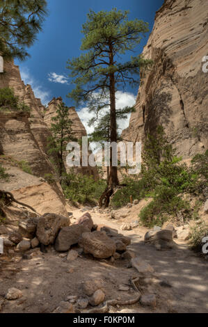 Near the mouth of the slot canyon in the Kasha-Katuwe Tent Rocks National Monument, Pueblo de Cochiti, New Mexico - Stock Photo