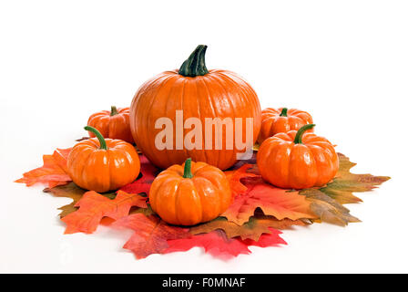 Autumn Or Fall Pumpkin Centerpiece Arrangement - Stock Photo