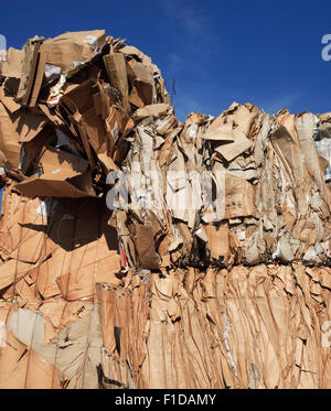 waste paper for recycling - Stock Photo