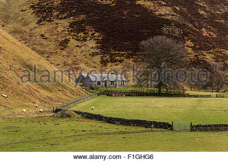 Cottage set within hilly countryside near the village of Coulter in South Lanarkshire, Scotland in late-Winter / - Stock Photo