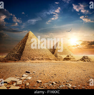 Big bird over pyramids at the sunset - Stock Photo