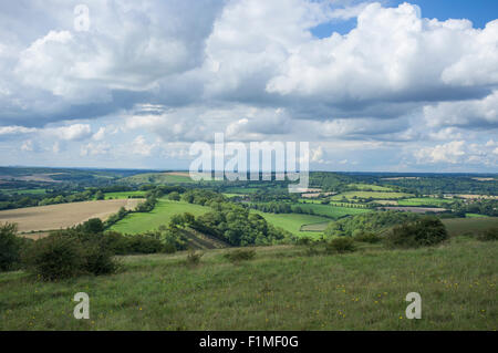 View from Butser Hill in the South Downs National Park looking North West towards East Meon - Stock Photo