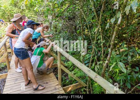 Costa Rica, Puntarenas province, Manuel Antonio National Park, tourists observing animals - Stock Photo