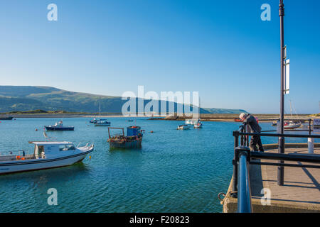 A man looking into the Harbour from the quayside at barmouth gwynedd Wales UK - Stock Photo
