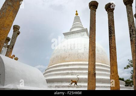 Sri Lanka, Sri Lanka, North Central Province, Anuradhapura archeological site listed as World Heritage by UNESCO, - Stock Photo