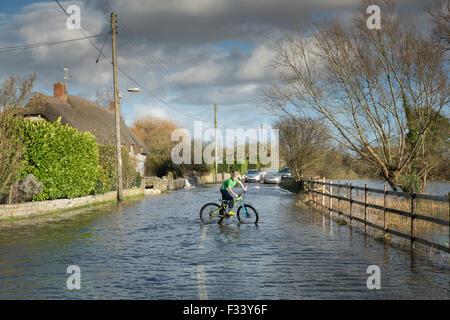 flooding nr Muchelney, Somerset, England, UK - Stock Photo