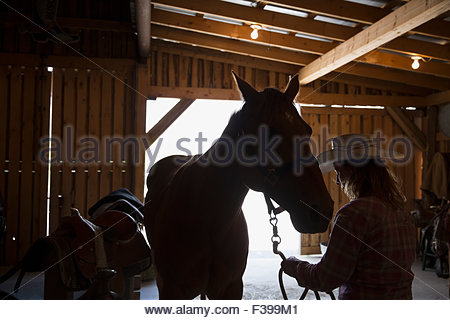 Silhouette of female rancher with horse in stable - Stock Photo