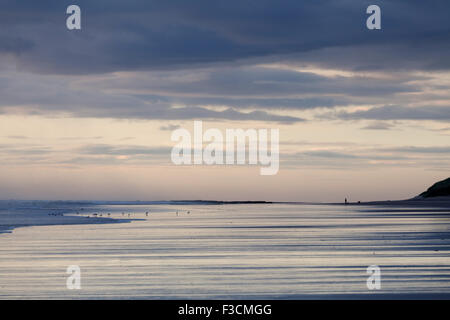 Lone dog walker in the distance on Bamburgh beach early in the morning, Northumberland, UK - Stock Photo