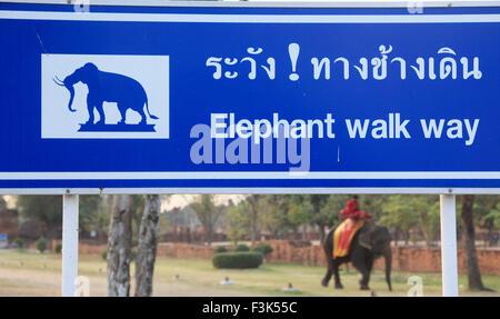 Thailand, Ayutthaya, elephant walk way sign, - Stock Photo