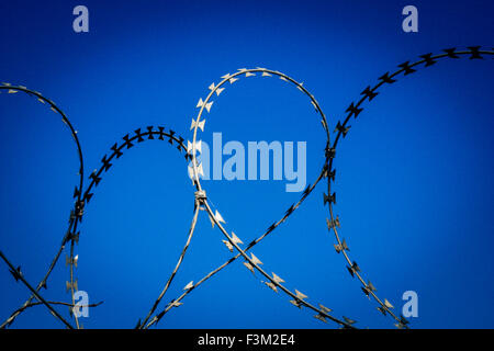 Coils of razor wire. - Stock Photo