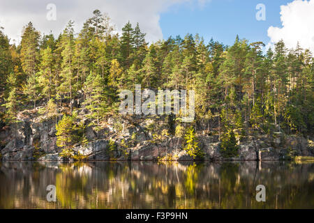 Green forest grow on top of a cliff aside lake - Stock Photo