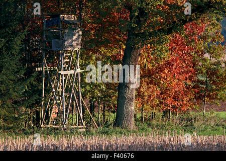 Deerstand, Bavaria, Germany - Stock Photo