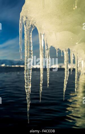 Antarctica, Icicles hang from Iceberg floating near Enterprise Island in Wilhelmina Bay along Antarctic Peninsula - Stock Photo